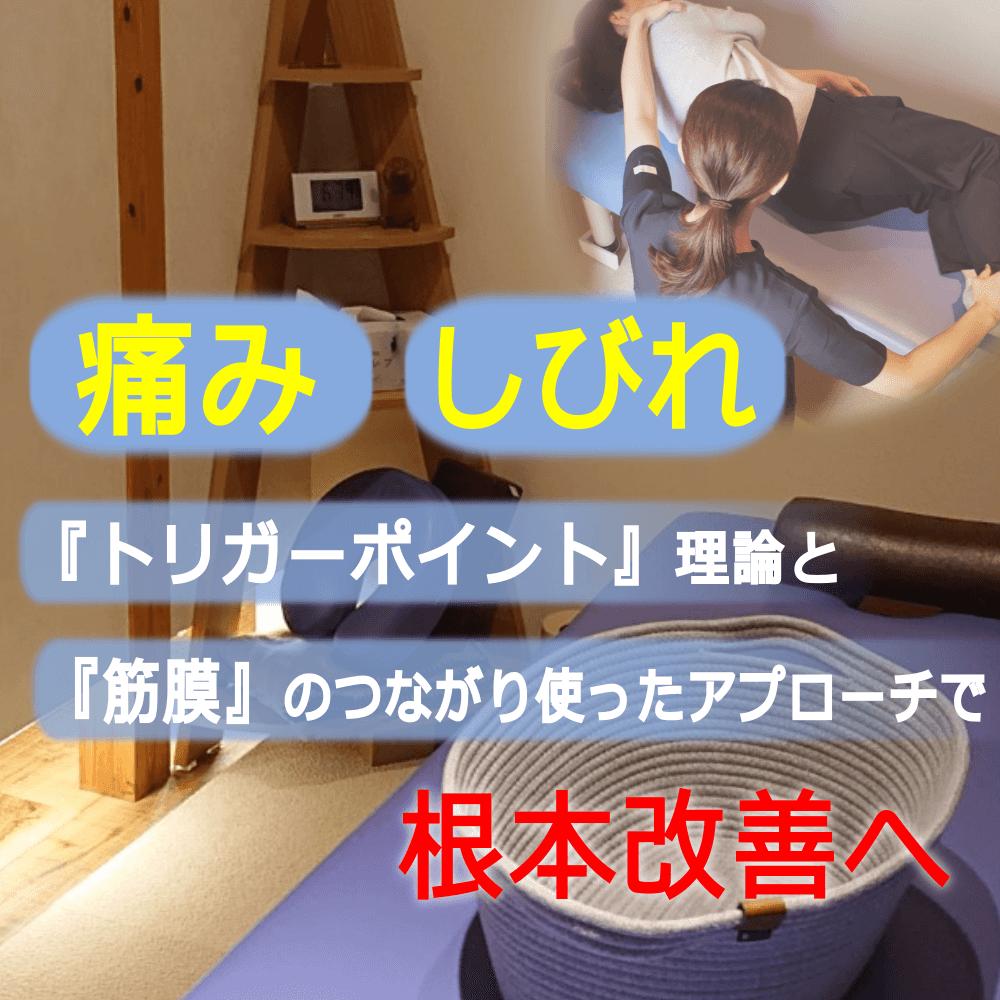 【トリガーポイント・筋膜アプローチ専門】整体院SEEK