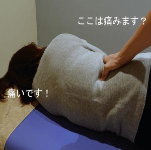 腰方形筋の痛みを確認